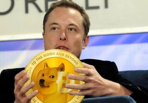 CEO tesla y dogecoin